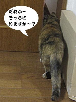 13_10_13_1.jpg