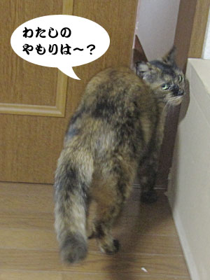 13_10_13_2.jpg
