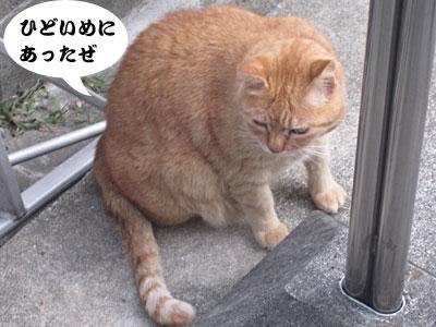 13_10_17_4.jpg