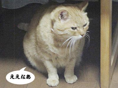 13_11_01_5.jpg