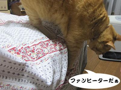 13_11_12_4.jpg