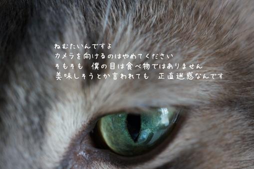 b6224.jpg