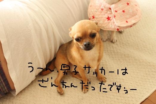 IMG_6267.jpg
