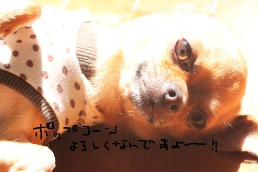 IMG_7318.jpg
