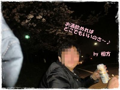 2012夜桜2