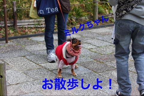 fc2blog_2014120620242982d.jpg