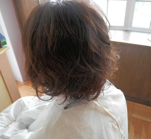 P5081113.jpg