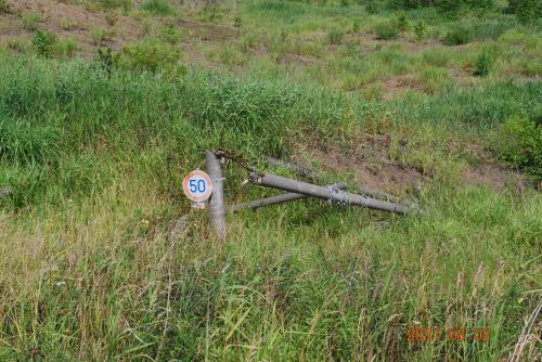 埋もれた標識