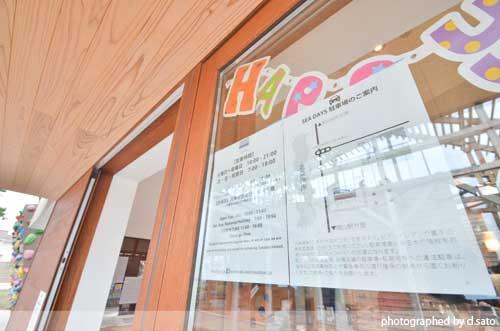 千葉県 館山市 北条 海岸 SEA DAYS COFFEE シーデイズコーヒー 海が見える カフェ 海沿い ボルダリング18