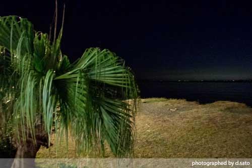 千葉県 館山市 休暇村 館山 日帰り 温泉 口コミ オーシャンビュー 海が見えるお風呂15