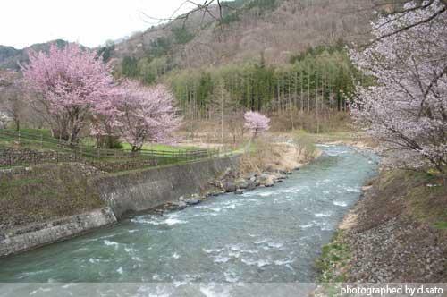 長野県 白馬 観光 大出の吊橋 レンタサイクル 散策 白馬駅 写真13