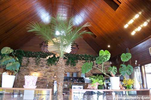 神奈川県 秦野市 レストラン グルメ レトロ インテリア ハンバーグ ランチ 洋食屋 吹き抜け 居心地が良い 空間 1
