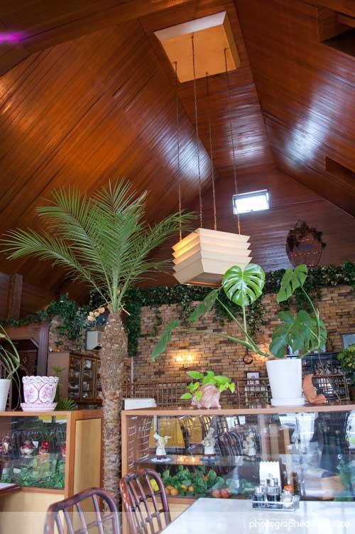 秦野市 レストラン グルメ 写真 10