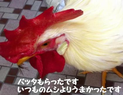 ni-111_convert_20130629230741.jpg