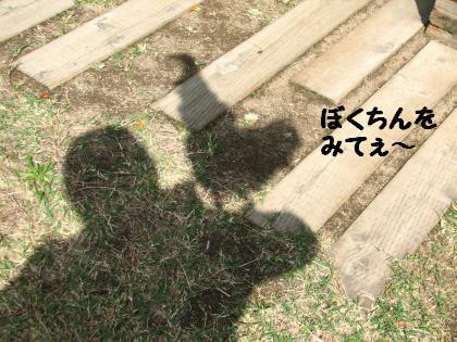 ni-14_201310172320227e9.jpg