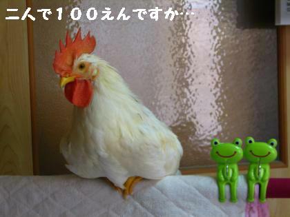 ni-56_20130609225238.jpg