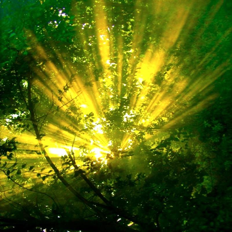 Blessing_of_the_Light800PX42.jpg