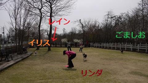P1120231.jpg