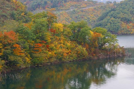 131106徳山湖-2
