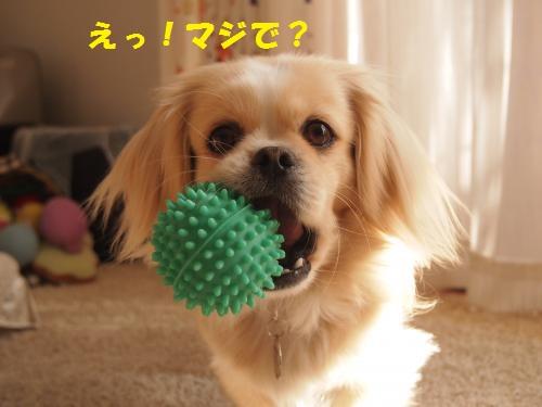 009_convert_20140131154539.jpg