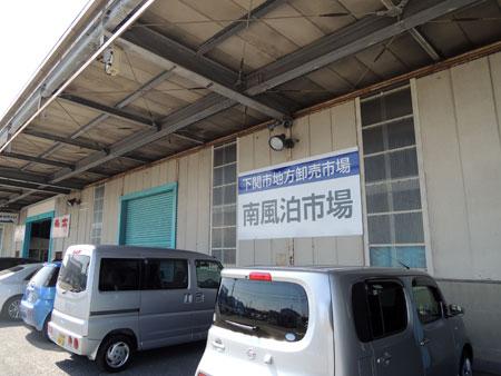 DSCN3461.jpg