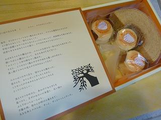 20130623_KOYAMA2.jpg