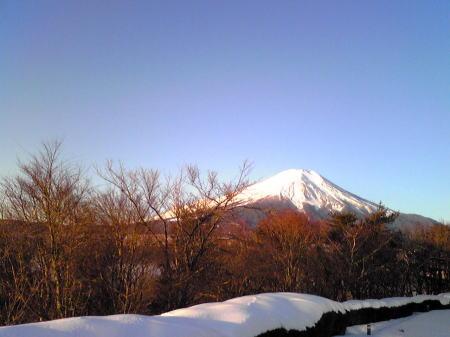hikakuhuji2.jpg