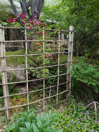 竹垣とマダムジュリアコレボン