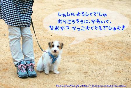 130606_nishi.jpg