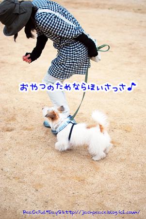130606_nishi1.jpg