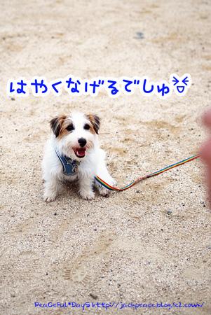 130606_nishi11.jpg