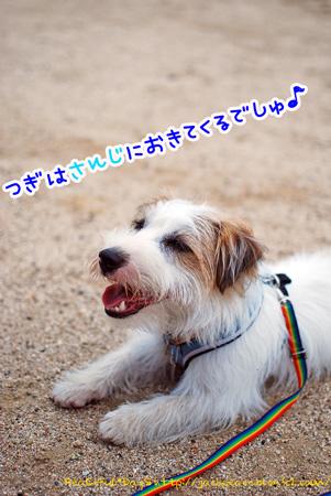 130606_nishi12.jpg