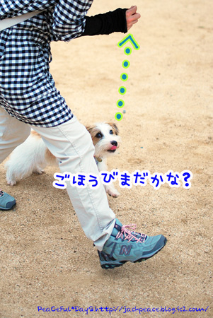 130606_nishi4.jpg