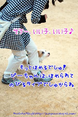 130606_nishi5.jpg
