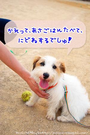130619_kinokawa4.jpg