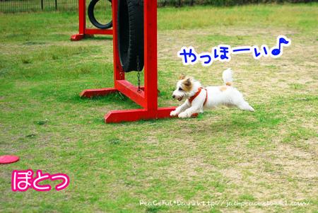 130619_yuasa13.jpg