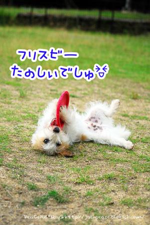 130619_yuasa15.jpg