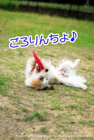 130619_yuasa16.jpg