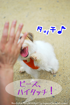 130619_yuasa18.jpg