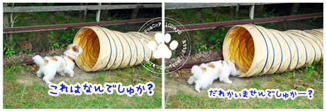 130619_yuasa2.jpg