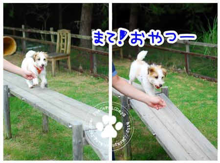 130619_yuasa4.jpg