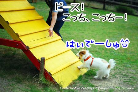 130619_yuasa7.jpg