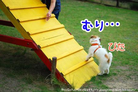 130619_yuasa8.jpg