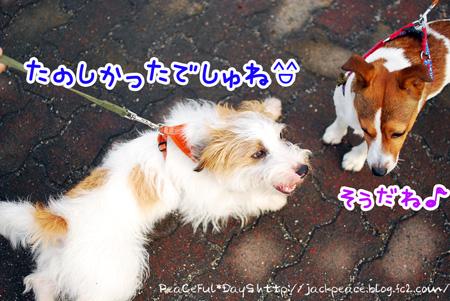 130627_kinokawa18.jpg