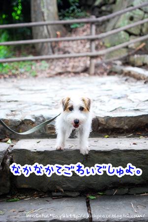130627_oshiro.jpg