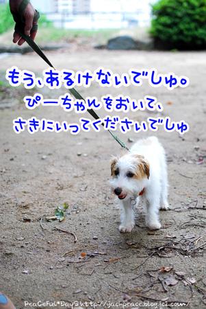 130627_oshiro2.jpg