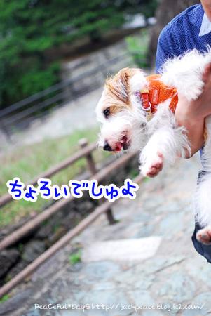 130627_oshiro3.jpg