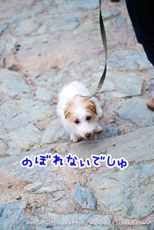 130627_oshiro4.jpg