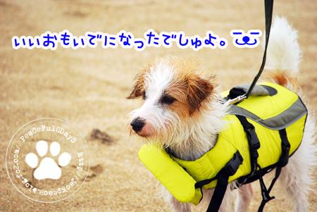 130704_umi10.jpg