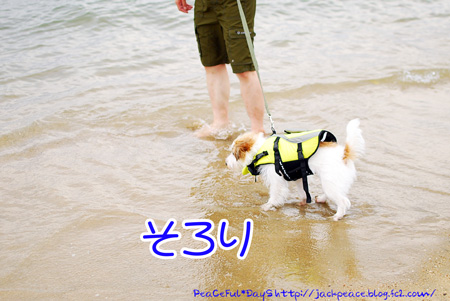 130704_umi3.jpg